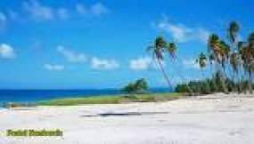 شاطئ  نيمبيريلا