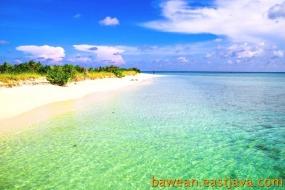 Noko-eiland, Oost-Java