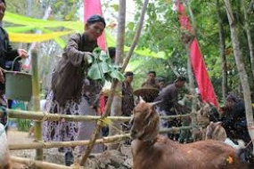 De ritueel van Grubegan vanuit Bantul, Yogyakarta