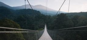 Het Hangbrug van Situ Gunung