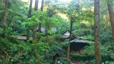 Source : http://voinews.id/indonesian/index.php/component/k2/item/584-hutan-wisata-sehat-citamiang