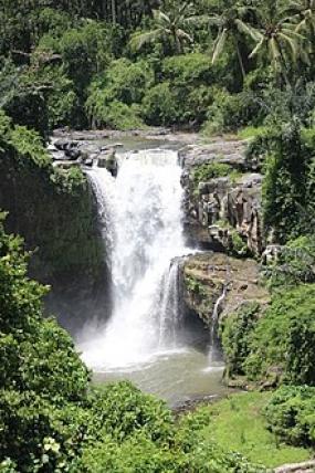 La cascade de Tegenungan à Gianyar, Bali