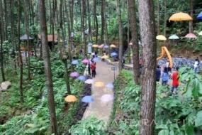 Le parc de Srambang