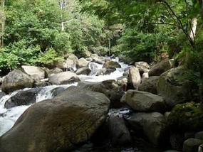 Tonjong Canyon