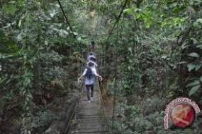 Der Nationalpark  von Kutai  in  Ostkalimantan