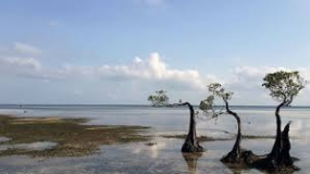 Der Walakiri Strand in Ost Sumba