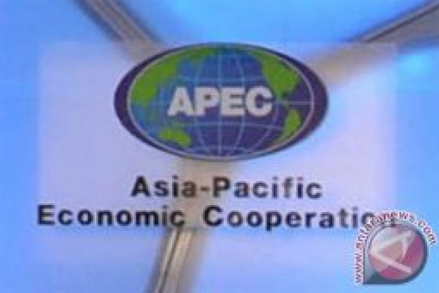 Multilateral Cooperation Needed More Than Ever: APEC Host