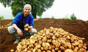 Organic Program of Young Farmers Creates Positive Result