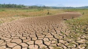 Anticipating The Widespread Of Drought