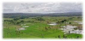 la colline de Persaudaraan Mau Hau