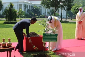 President Joko Widodo and Abu Dhabi Crown Prince Sheikh Mohamed Bin Zayed Al Nahyan plant a resin tree (Agathis dammara (Lamb.) Rich) in the Bogor Presidential Palace yard, Wednesday (24/7/2019)
