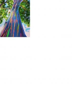 Árboles arcoíris en Bondowoso
